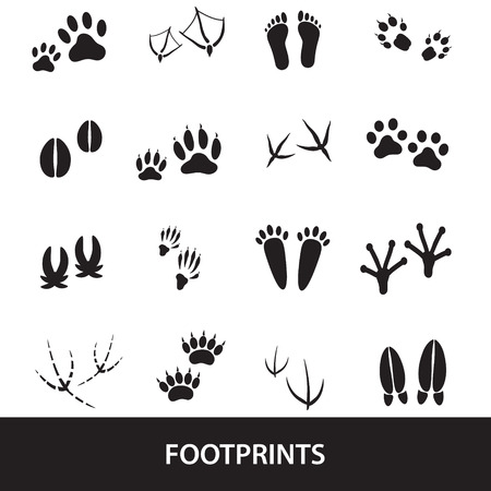 animal leg: basic animal footprints set Illustration