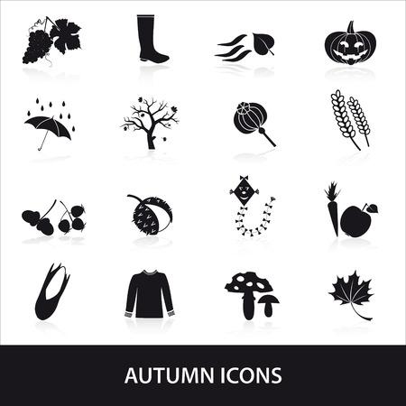 corn poppy: autumn icons set eps10