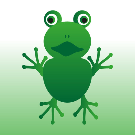 crazy frog: isolated green frog animal looks at you