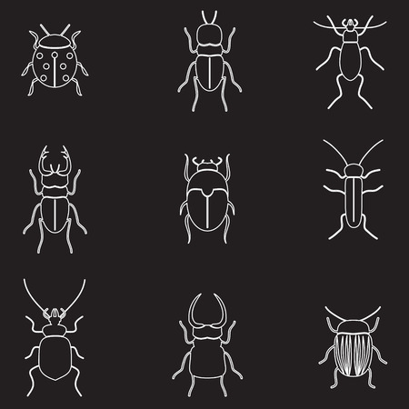 beetles: bugs and beetles outline icons set eps10