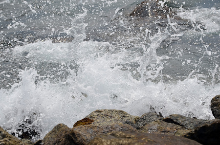sprayed: sea water sprayed on the stone cliff