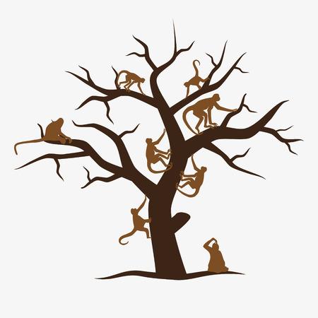 monos: árbol mono marrón con un montón de monos