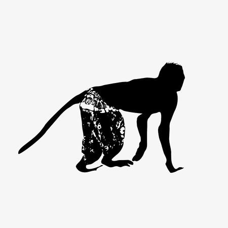 shorts: black silhouette of small monkey wearing shorts  Illustration