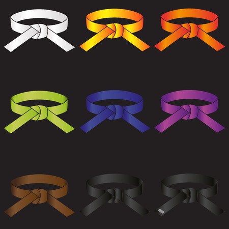 karate do martial arts color belts icons set  Illustration