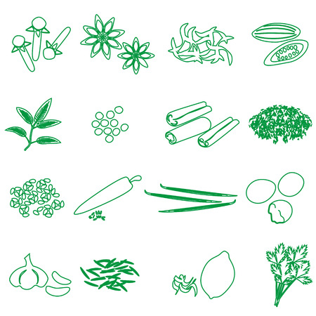 seasonings: spices and seasonings outline icons set eps10 Illustration