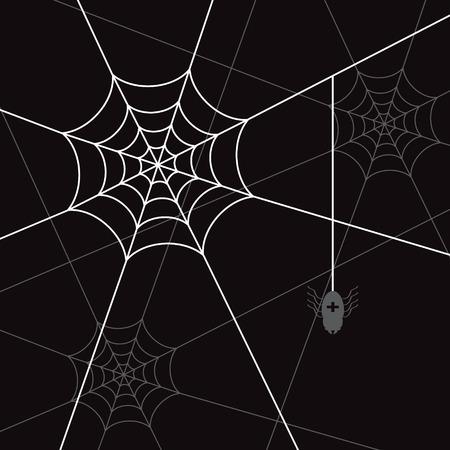 spider web: spider white web and little spider black