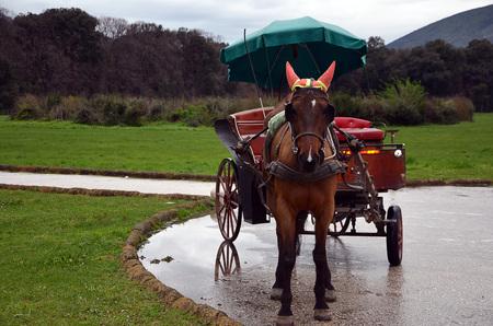 bocinas: caballo con cuernos y carro