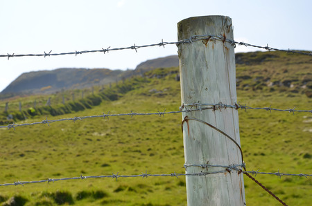 boundary: barbed wire and detail of wooden stake boundary of pasture Stock Photo