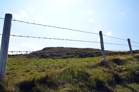 boundary: barbed wire and wooden stakes boundary of pasture Stock Photo