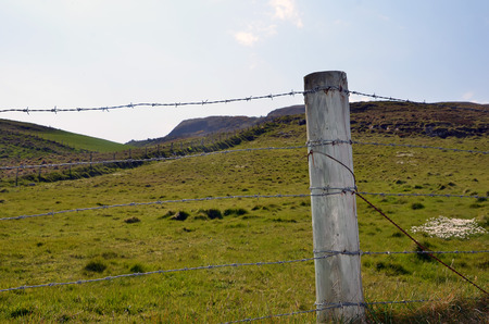 boundary: barbed wire and wooden stake boundary of pasture Stock Photo