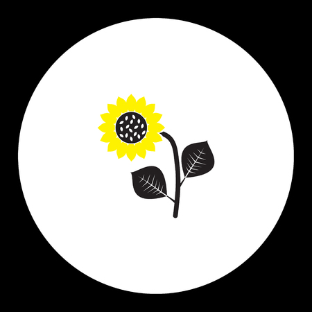 sunflower isolated: black and yellow sunflower isolated black icon