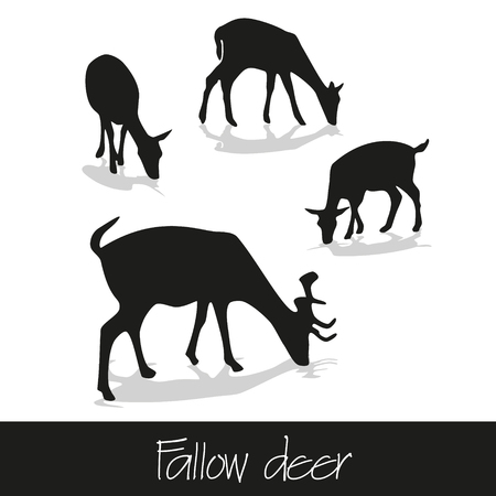 fallow: feeding fallow deer silhouette of animal icons