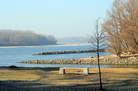 Danube and Morava river confluence near Bratislava city with tree