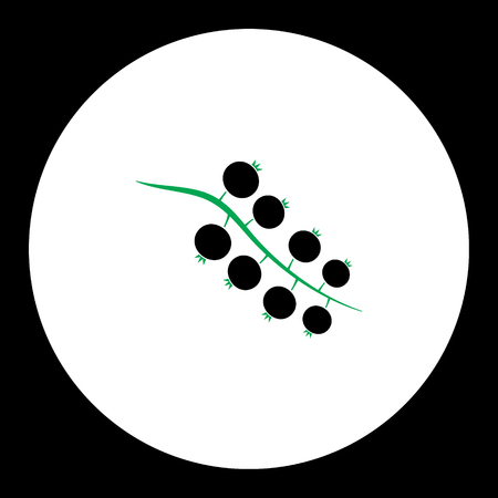 currant fruit simple black and green icon eps10 Illustration