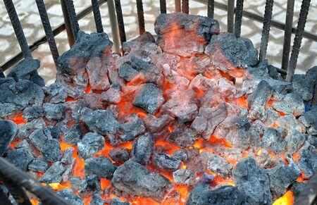 black coalwarm on the street bin cold winter