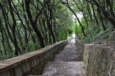 part of long phoenix walking path at Capri island in Italy