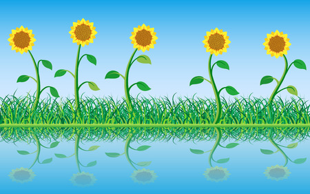 water reflection: Grass and Sunflowers with Reflection in the Water. Illustration. Illustration