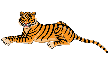 tiger isolated: Tiger. Isolated animal. Vector illustration.