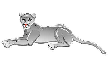 lioness: White Lioness. Isolated animal. Vector illustration.