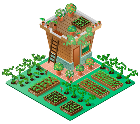 Garden in spring. Garden house with seedlings and flowers. 3d isometric view. Vector illustration.