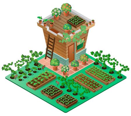 Casas de campo en primavera. casa de jardín con plantas y flores. vista isométrica 3d. Ilustración del vector.