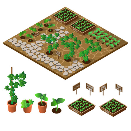 seedlings: Garden in spring. Isometric icon set. Vector illustration.