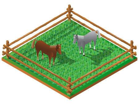 hay field: Two horses in pasture. 3D isometric view. Vector illustration.