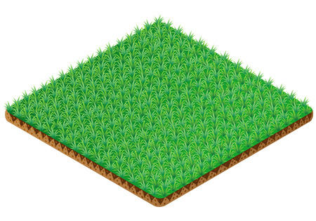 grass isolated: Grass tile. Isometric view. Vector illustration.