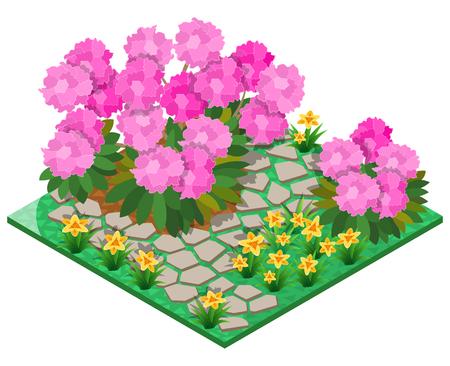 Siertuin met rododendron, lelie en stenen bestrating. 3D isometrische weergave. Vector illustratie.