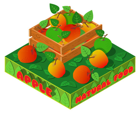 Apples, wooden crate, leaves and text. 3D isometric view. Vector illustration.