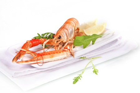 Luxury concept. Fine dining. Langoustine on white background with herbs and lemon.