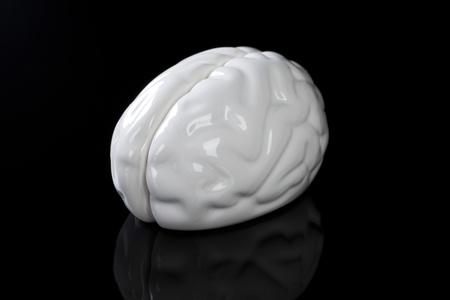 White ceramic brain isolated on black background. photo