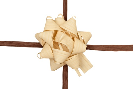 Ecology concept. Brown string and ribbon on white background. photo