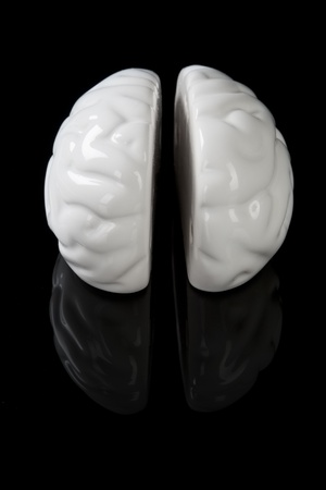 White ceramic brain isolated on black background. photo