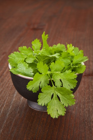 culantro: Cilantro fresco en Bol redondo negro sobre fondo de madera oscura. Serie de hierbas culinarias frescas. Foto de archivo
