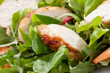 green salad: Fresh green salad with chicken and lettuce  Fresh summer background  Healthy eating