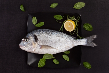 gilt head: One fresh gilt head bream on black square plate with fresh basil leaves and lemon  Luxurious mediterranean seafood eating concept