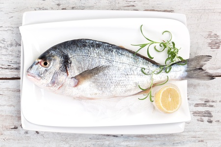 Mediterranean seafood concept  Fresh sea bream on white plate with lemon and rosemary on white wooden textured background  photo