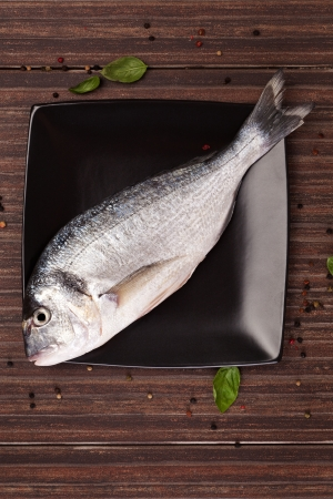 gilt head: Fresh gilt head bream on black square plate with colorful peppercorn and fresh basil leaves on brown natural background  Culinary seafood concept