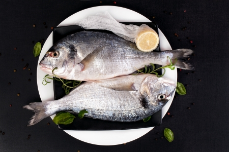 Two fresh sea bream fish on plate with fresh herbs basil, rosemary, cut lemon and colorful peppercorn, top view  Luxurious mediterranean seafood concept in black and white   photo
