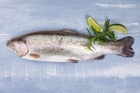 Fresh delicious trout with rosemary and lime isolated on blue and white wooden background, top view  Luxurious bright vibrant mediterranean seafood background  photo