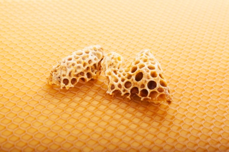 Honeycomb with royal jelly  Golden beekeeping background  photo