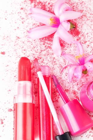 Pink Make Up and Cosmetics still life  Girly glamour concept  Pink lipstick, lip gloss and Nail polish, facial powder with flower on white background, top view  Stock Photo - 20079435