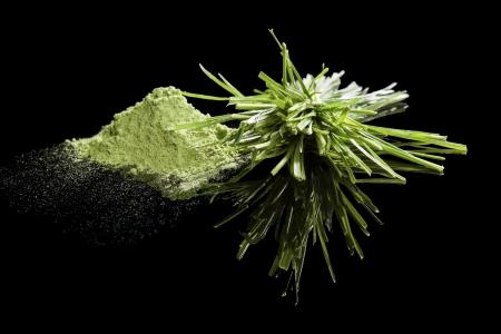 Wheatgrass and wheatgrass powder isolated on black background. Chlorella, spirulina and wheatgrass, healthy green food supplements. Stock Photo