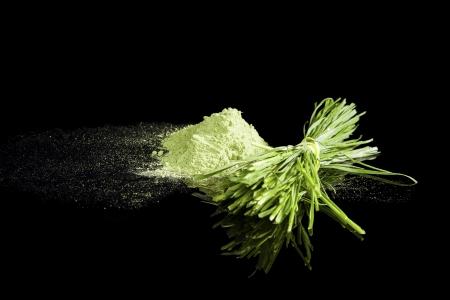 ウィート グラス パウダーと新鮮なウィート グラスの分離された黒い背景をバンドルします。代替医療のコンセプトです。健康食品サプリメント。 写真素材