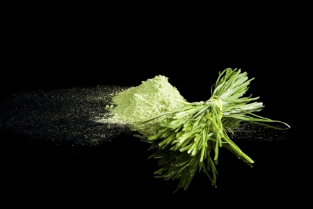 Wheatgrass powder and fresh wheatgrass bundle isolated on black background. Alternative medicine concept. Healthy food supplement. Stock Photo