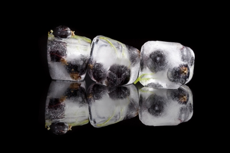 ribes: blackcurrant frozen in ice cubes isolated on black background with reflection. Luxurious fresh iced summer fruit still life. Stock Photo