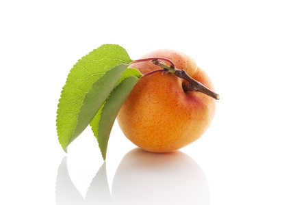 Fresh delicious apricot with leaf isolated on white background with reflection. Healthy fruit eating. Stock Photo - 21858982