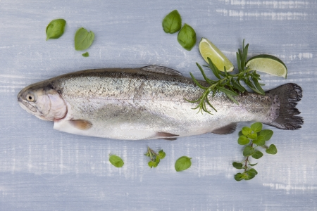 Culinary seafood eating. Trout with fresh herbs and lime on blue wooden background.  photo