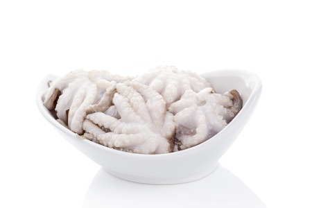 Raw octopus in white round bowl isolated on white background. Culinary seafood eating. photo